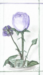 Purple Rose 2020-05